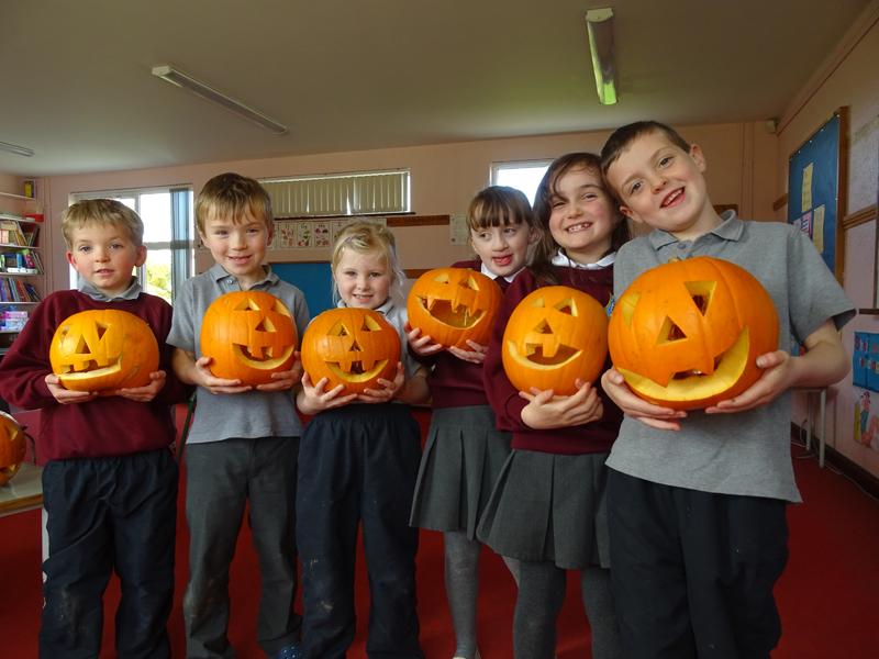 pumpkins (12)