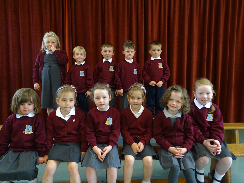 junior infants 16 (17)