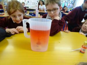 Science Week 2020 (4)
