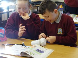 Science week 2019 (30)