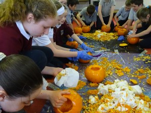 16 pumpkins (17)
