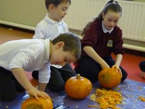 16 pumpkins (20)