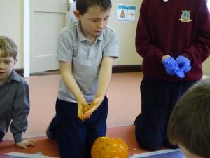 16 pumpkins (29)