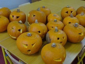 16 pumpkins (31)