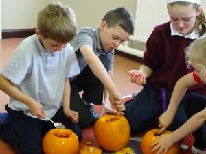 16 pumpkins (40)