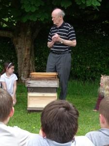 Bees DSC08827 (28)