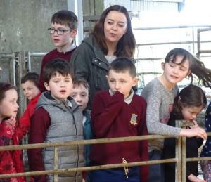 Dairy Farm Visit 2018 (23)