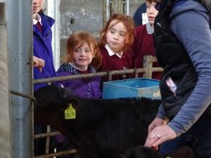 Dairy Farm Visit 2018 (25)