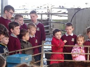 Dairy Farm Visit 2018 (27)