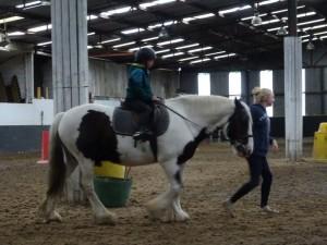 Horse Riding 2017 DSC09837 (100)