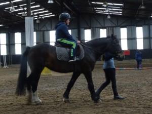 Horse Riding 2017 DSC09837 (101)
