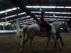 Horse Riding 2017 DSC09837 (102)