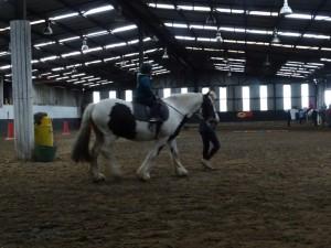 Horse Riding 2017 DSC09837 (105)