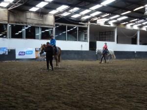 Horse Riding 2017 DSC09837 (107)