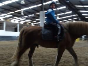 Horse Riding 2017 DSC09837 (108)