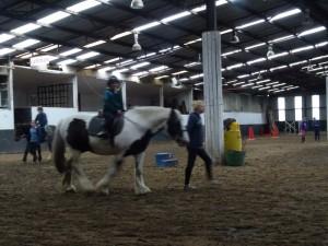 Horse Riding 2017 DSC09837 (113)