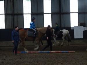 Horse Riding 2017 DSC09837 (115)