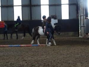 Horse Riding 2017 DSC09837 (117)
