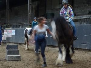 Horse Riding 2017 DSC09837 (120)