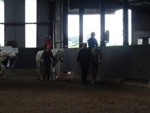 Horse Riding 2017 DSC09837 (121)