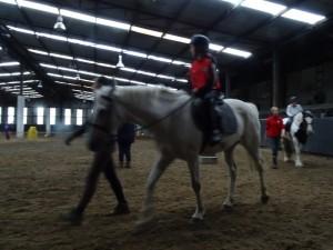 Horse Riding 2017 DSC09837 (124)