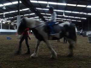 Horse Riding 2017 DSC09837 (125)