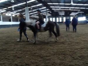 Horse Riding 2017 DSC09837 (126)