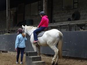 Horse Riding 2017 DSC09837 (99)