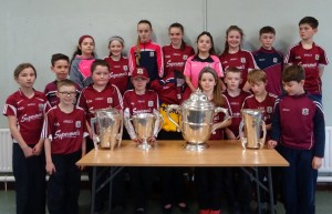 Liam McCarthy Cup 2018 (1)