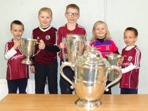 Liam McCarthy Cup 2018 (12)