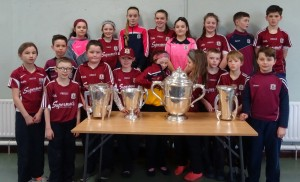 Liam McCarthy Cup 2018 (2)