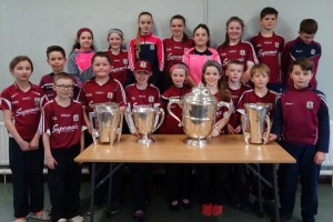 Liam McCarthy Cup 2018 (3)