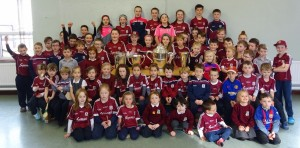 Liam McCarthy Cup 2018 (5)