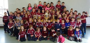 Liam McCarthy Cup 2018 (6)