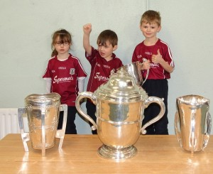 Liam McCarthy Cup 2018 (8)