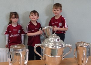 Liam McCarthy Cup 2018 (9)