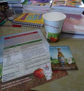 Planting Tomotoes DSC07909 (3)