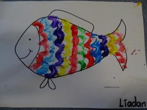 Rainbowfish9